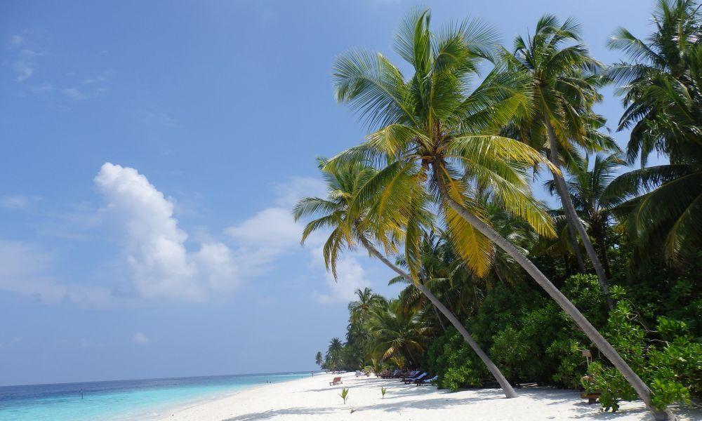 FILITHEYO ISLAND 3-4*
