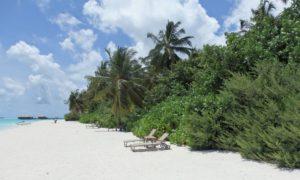 COCOON MALDIVES 4-4.5*