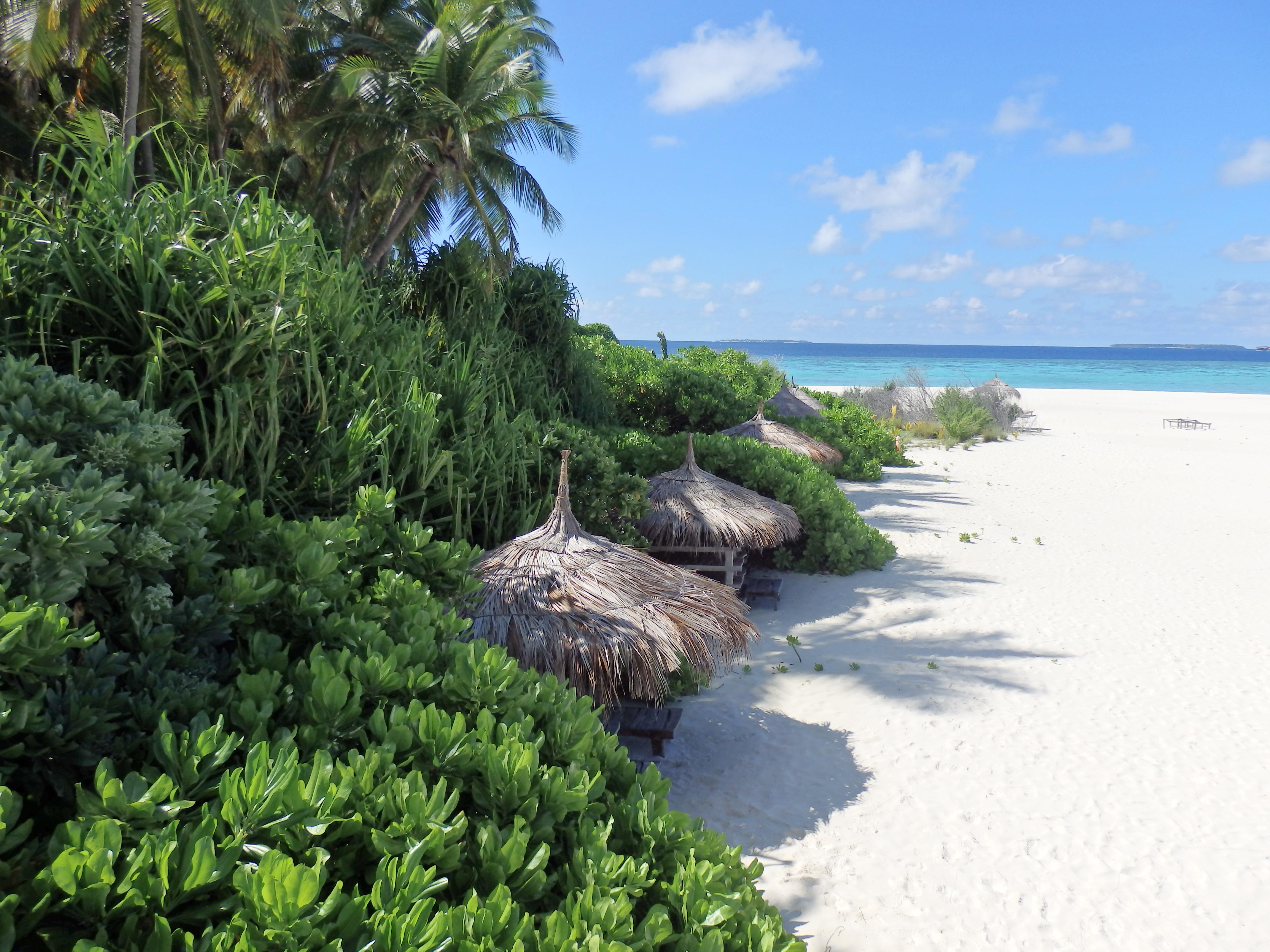 aaaVeee Nature's Paradise - ahol a természet a luxus ...